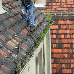 Cleaning & roof maintenance